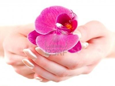 4682414-violet-orchidee-a-la-main-contre-la-femme-blanche